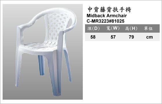 休閒家具,椅子,塑膠椅,C-MR3223#81025,Midback Armchair,中背藤背扶手椅
